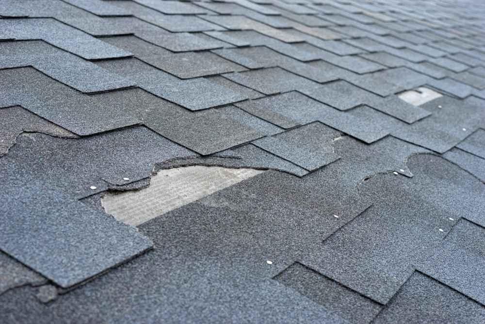 Damaged asphalt shingles